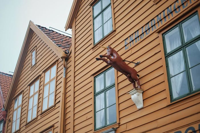 Architecture Building Building Exterior Built Structure City Day Horse Horse Figure Low Angle View Modern No People Outdoors Residential Building Residential Structure Sky Wooden