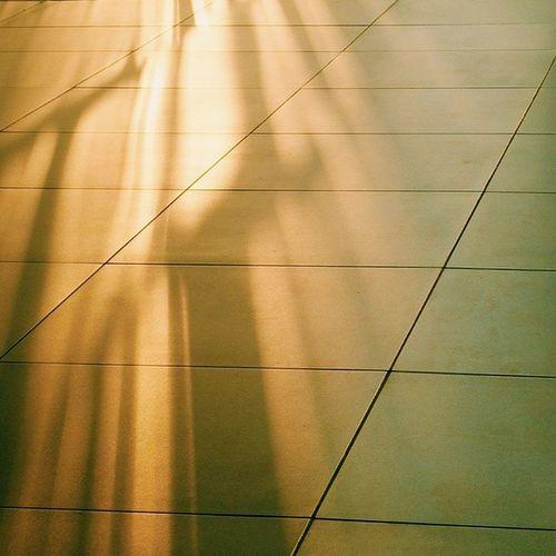Vscocam Light Sunbright Floor shadow