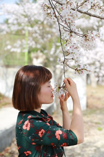 Woman smelling cherry blossom flower