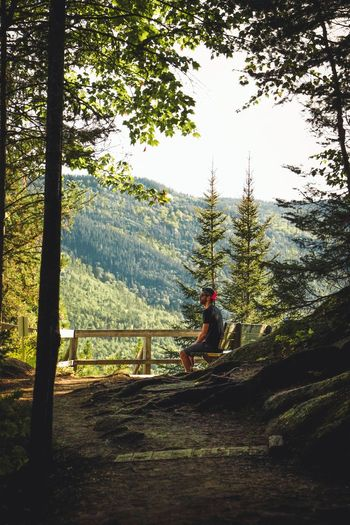 Late summer hike Bench Forest Forest Photography Forestwalk Walking Hike Nature Nature_collection Outdoor Photography Outdoors Mountain Range Landscape Sunlight Dark Wood Tree Men Sitting Full Length Sky