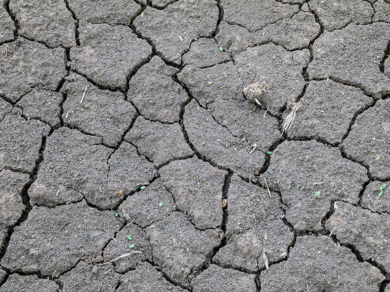 Arid Climate Backgrounds Close-up Cracked Day Detail Full Frame Grey Ground Land Natural Pattern Nature No People Outdoors Rough Textured  Tranquility