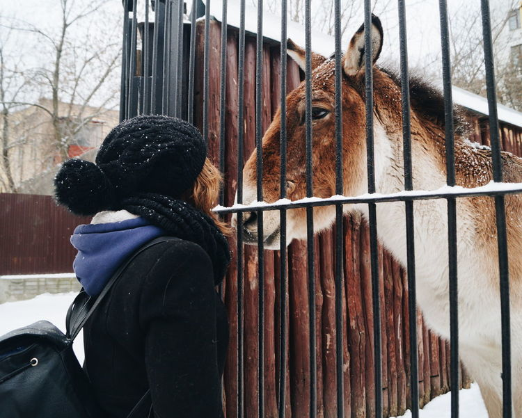 VSCO Taking Photos Hello World That's Me Check This Out Relaxing Hi! Enjoying Life Beautiful Day Wintertime Interesting Whynot 2016 New Look Snow ❄ It's Cold Winter Horse <3 Cute Animal My Student Life