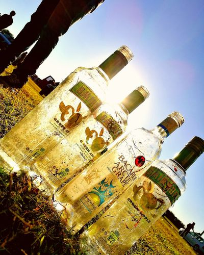 #BeCool Party Day Smirnoff Bacardi  Trago Fiesta Botella Drink Bottle Good Times Becool Argentina Córdoba Apple Sun Low Angle View Day Built Structure Sky No People