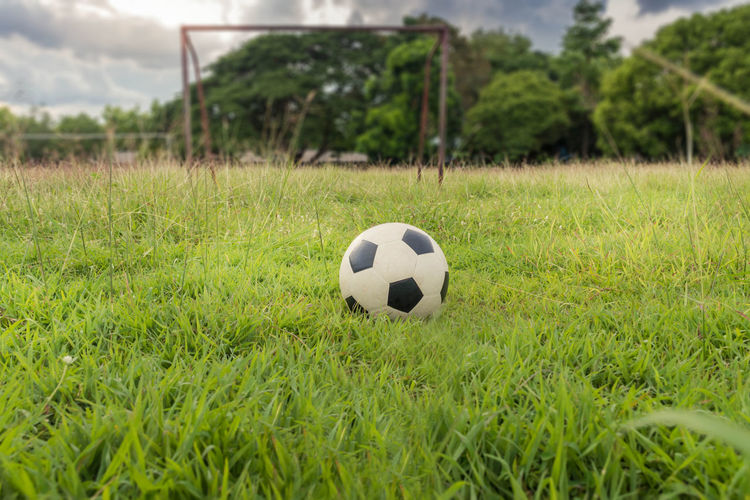 football,soccer on grass field Ball Grass Plant Team Sport Sport Soccer Soccer Ball Green Color Sports Equipment Field Nature Day Focus On Foreground Land Close-up Outdoors Growth Playing Field Soccer Field Surface Level Playing Training Rural Scene Countryside Vintage