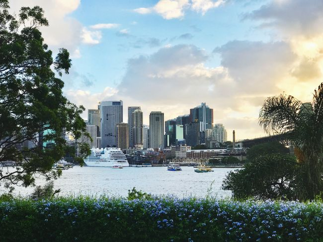 My city at sunset , goodnight 🌙 City Cityscape Beauty In Nature Walking And Taking Pics Beautiful Day EyeEm Gallery Sydney, Australia EyeEm Nature Lover For My Friends That Connect Eyemphotography Sky Sunset From My Point Of View