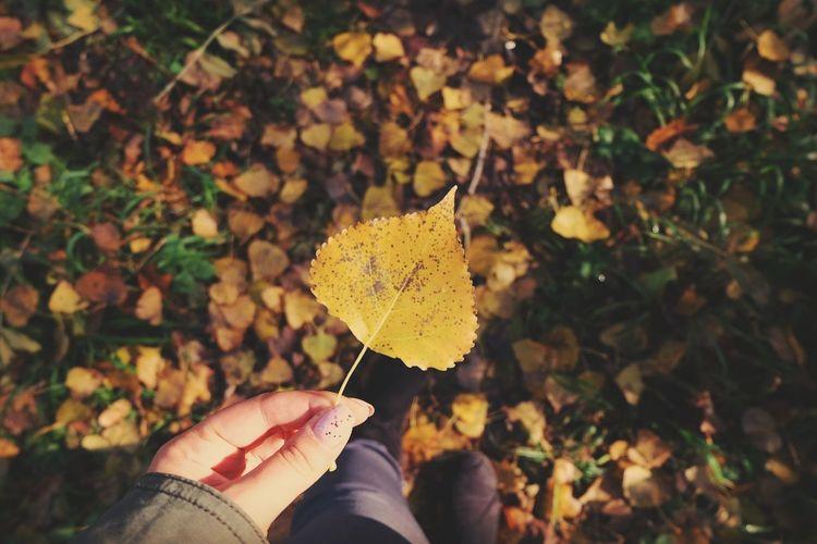 Herbst 😊