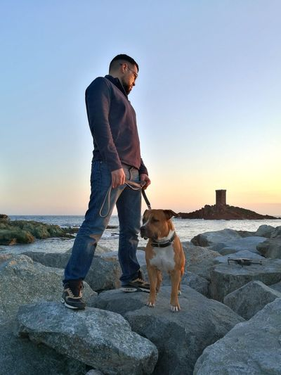 Looking drone on the rock! #amstaff #animal Dog Pittbulls Americanstaffordshire Americanstaffordshire #drones #France Dog Pets One Animal One Man Only Sunset Outdoors Domestic Animals Friendship Sky Lifestyles Young Men Nature Beauty In Nature Men