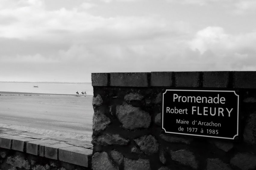 Promenade à cheval Sea Sky Text Horizon Over Water Water Beach Day Outdoors Communication Nature No People Beauty In Nature Horse Horse Riding Minimalist Photography  Naturelovers Horse Photography