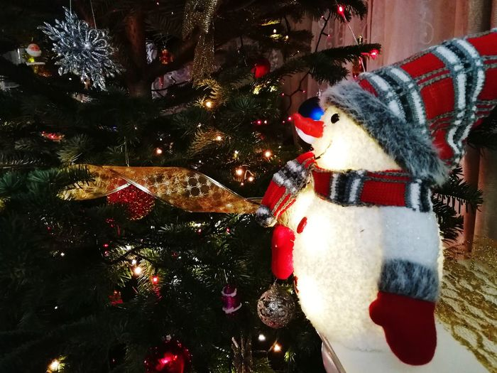 Snowman Frosty The Snowman Christmas Christmas Tree Christmas Decoration Celebration Holiday - Event Tradition Christmas Lights Christmas Ornament Celebration Event Night