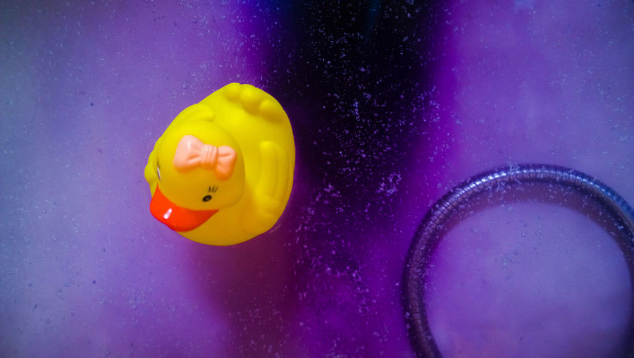 Directly above shot of rubber duck floating in bathtub