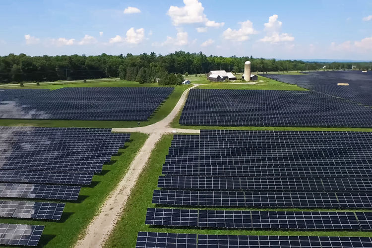 solar panels Sky Plant Nature Environmental Conservation Renewable Energy Environment Alternative Energy Fuel And Power Generation Day Tree Cloud - Sky Field Land Outdoors Landscape Solar Panel Solar Energy Sunlight Technology No People Sustainable Resources Solar Panels