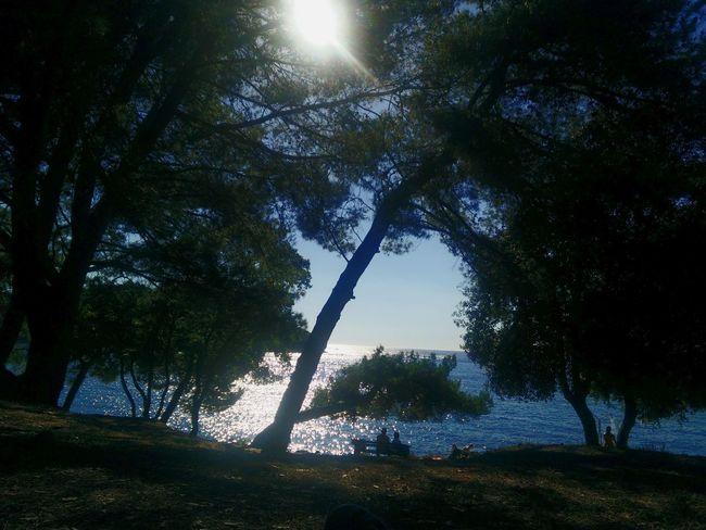 Evening at the sea Sunset Sea And Sky End Of Summer Croatia Vrsar