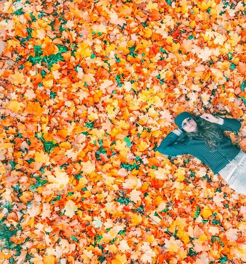 Autumn Orange Color High Angle View Change Plant Part Leaf Multi Colored Abundance Falling No People Nature Pattern Leaves Floral Pattern Directly Above Leisure Activity Lifestyles Shoe Day