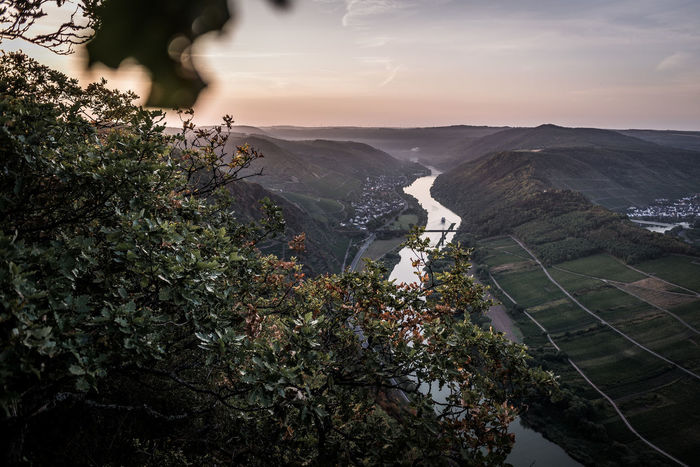 Plant Tree Beauty In Nature Sky Nature Scenics - Nature Mountain Cloud - Sky No People Growth Water Environment Architecture Day Outdoors High Angle View Tranquility Built Structure Green Color Mosel Mosel River In Germany Mosel Valley Moselschleife
