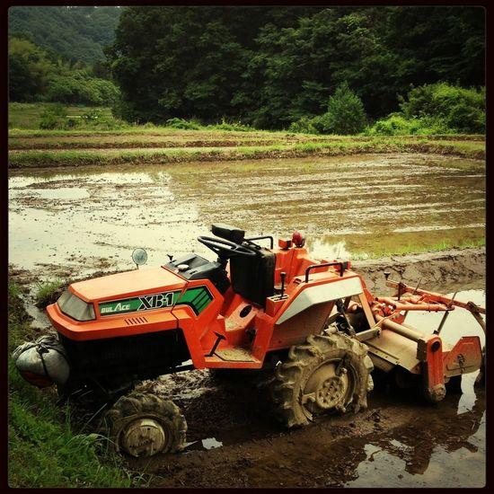 トラクター 畑