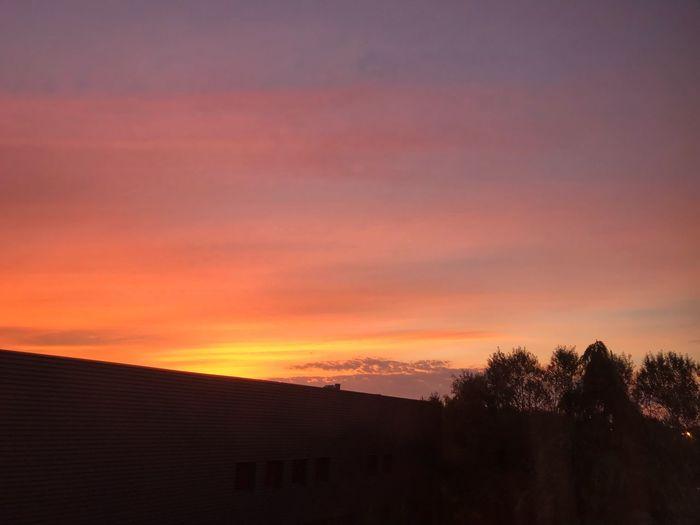 Evening Sunset First Eyeem Photo