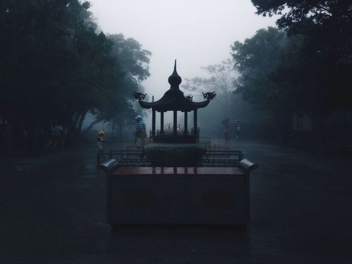 Man standing at silhouette gazebo amidst trees during foggy weather