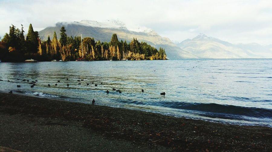 Mountains And Sea Paradise Newzealand