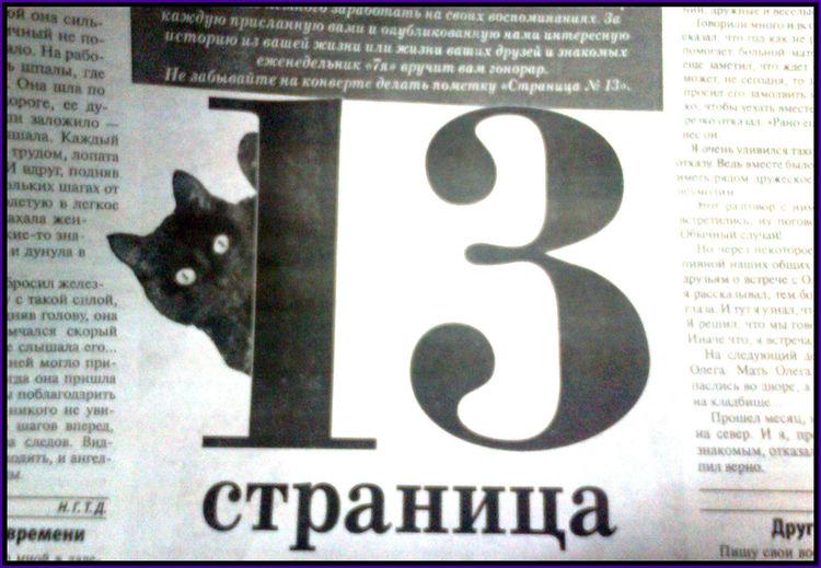 Друг времени Friend Of Time 13 1313 A Friend Of Time Pets Portrait Domestic Cat Text Close-up
