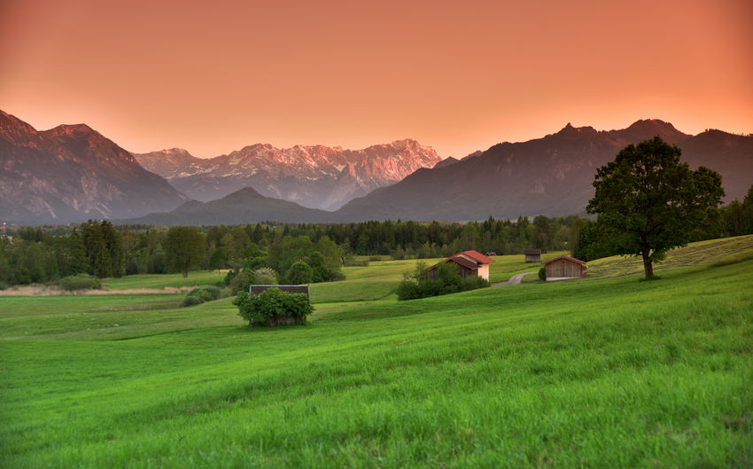 Sunset light over the Wetterstein massif and the Zugspitze Mountain Scenics - Nature Beauty In Nature Plant Tranquil Scene Grass Environment Sky Landscape Green Color Mountain Range Tranquility Tree Non-urban Scene Land Sunset Nature Field Idyllic No People Outdoors Rural Landscape Bavarian Landscape Bavarian Alps Sunset Lighting  Atmospheric Mood Meadowlands Alps Orange Sky EyeEm Nature Lover Landscape_Collection Nature Nature Photography Nikon Nikonphotography Zugspitze Travel Tavel Photography Dusk Postcard Beautiful Nature