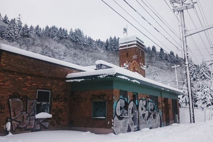 Winter Snow Cold Temperature Snowing No People Building Exterior Architecture Brick Abandoned EyeEm_abandonment Portland, OR Urban Landscape Portland Evergreen Graffiti Spray Paint Street Art Abandoned Places