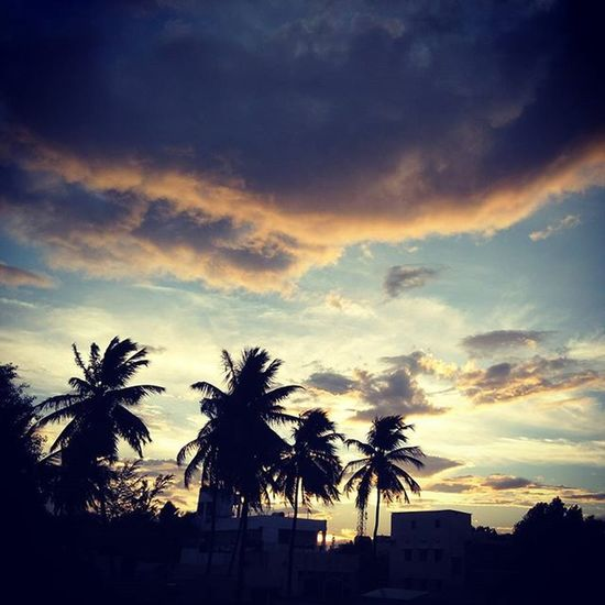 Evening Sunset Skybeauty Sky Beautiful Coimbatore Loveit Takeapicture