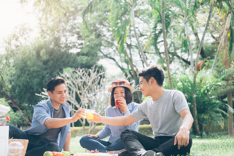 Cheerful Friends Toasting Drinks While Sitting On Picnic Blanket At Park