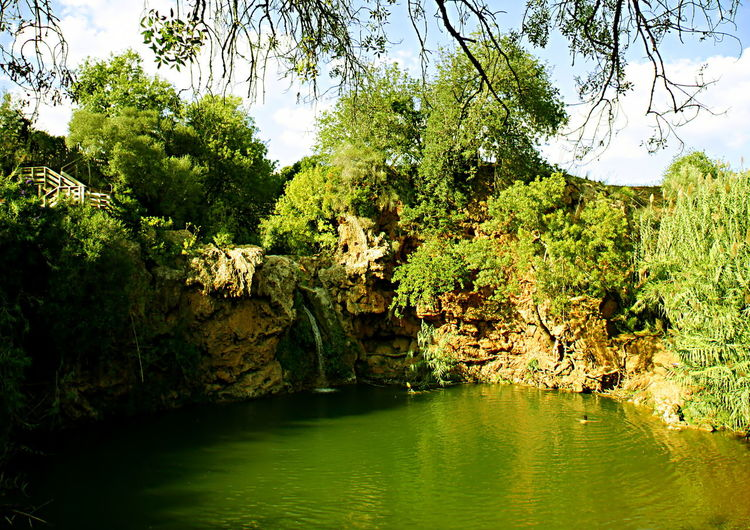 Algarve Bathing Beautiful Freshness Green Natural Nature Portugal Swimming Forest Hidden Hidden Lagoon Lagoon Lake Outdoors River Scenics Solo Swimmer South Of Portugal Summer Sunny Day Waterfall