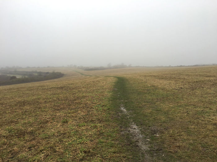 Cloudy Misty Path Field No People