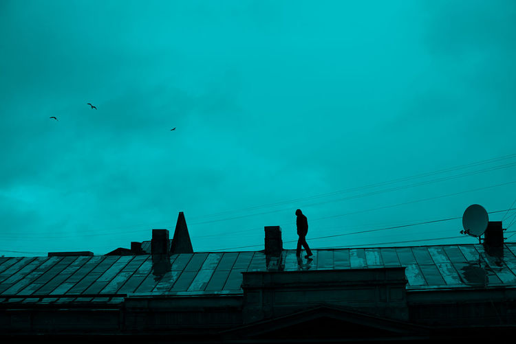 Man on the roof Animals In The Wild Architecture ArtWork Authentic Moments Bird Building Exterior Built Structure Candid City City Roof Day Flying Low Angle View Men Mid-air Nostalgia One Person Outdoors People Real People Roofs Silhouette Sky Spread Wings Urban Neon Life