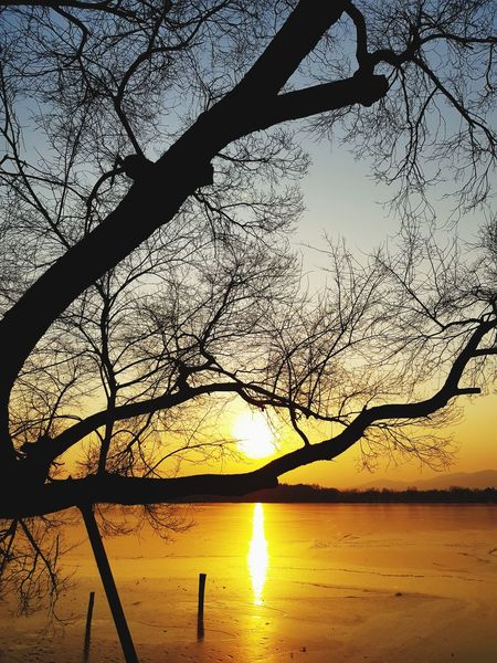 Nature Sunset Silhouette Water Beauty In Nature Reflection Sky Scenics EyeEmNewHere EyeEm Ready