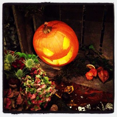 Owen his pumpkin ??