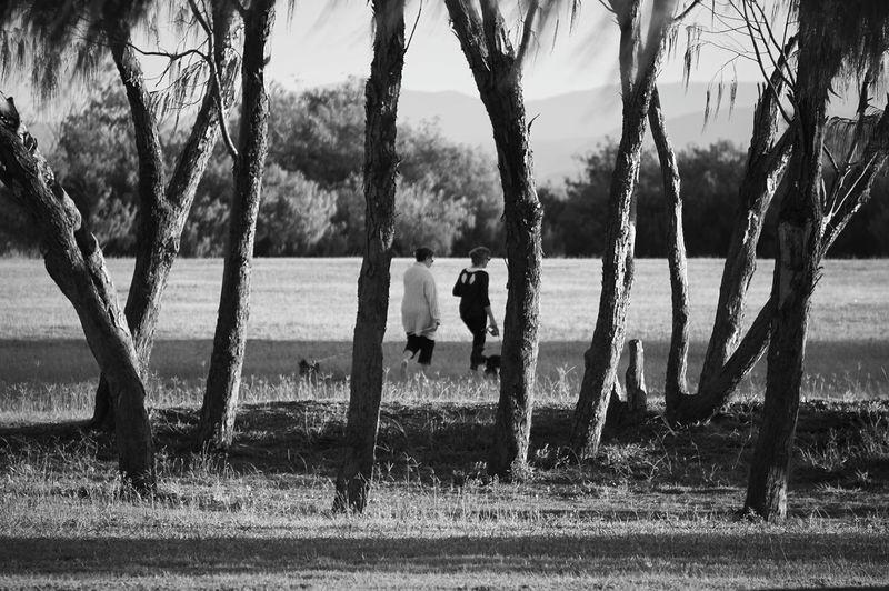 Women walking on grassy field by trees