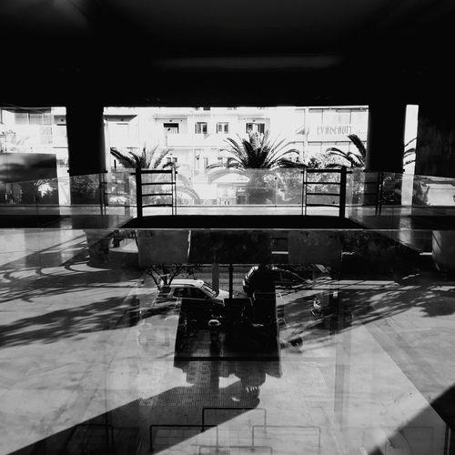 EyeEmNewHere #Athens #athenscity Athens Street Photography Athensstreetphotography #streetphotography Street Urban Reflection Glass Reflection Blackandwhite Black White Palm Tree Palm Leaf