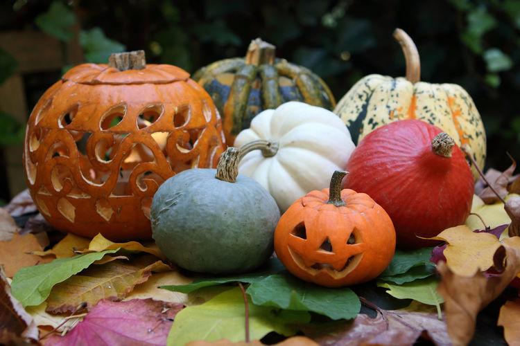 Close-up of pumpkin on pumpkins during autumn