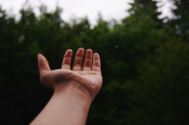 Human Hand Human Body Part Human Finger Real People One Person Palm Personal Perspective Focus On Foreground Close-up Day Outdoors Nature People
