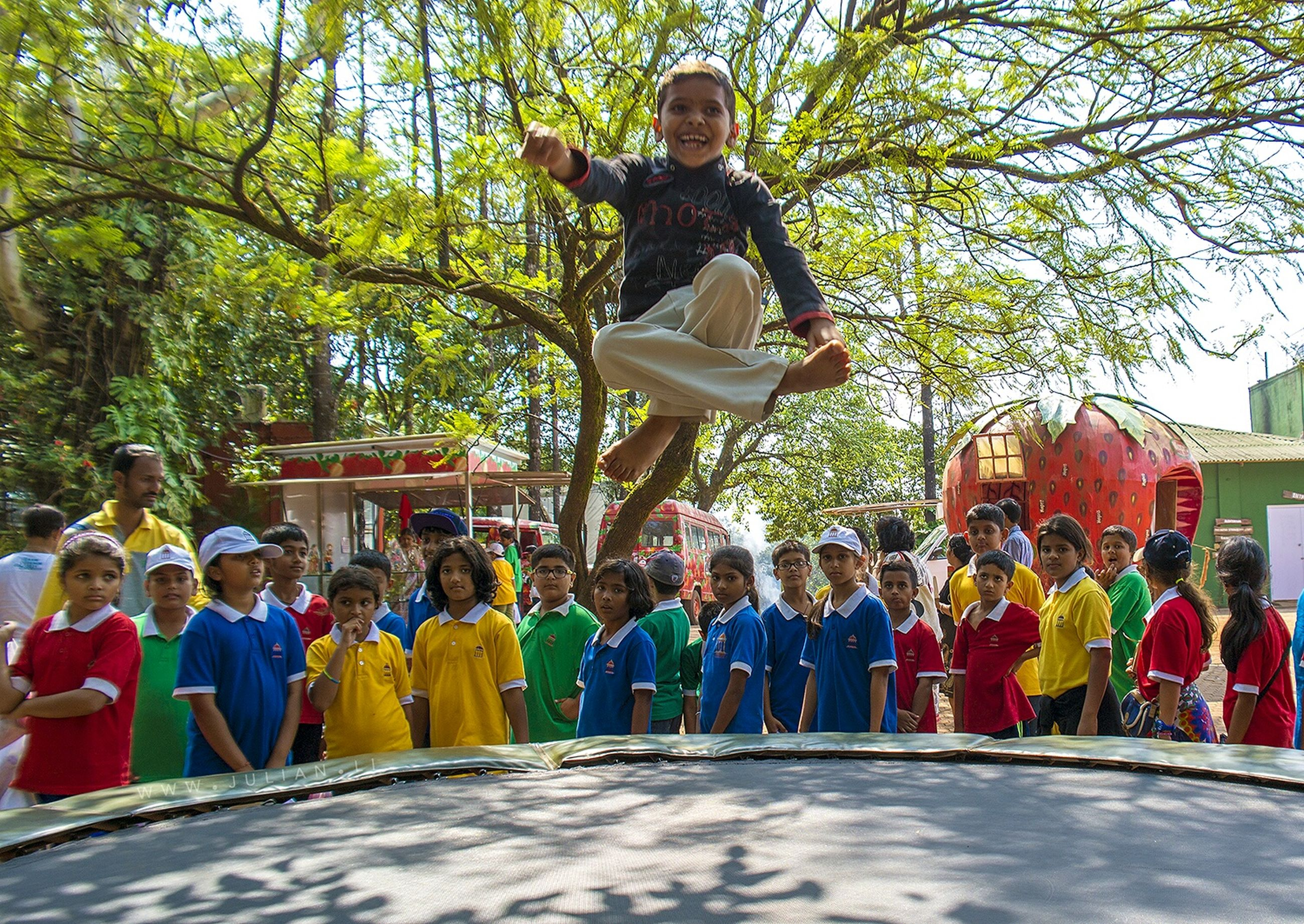 full length, lifestyles, casual clothing, leisure activity, young adult, person, tree, standing, happiness, front view, enjoyment, young women, fun, jumping, smiling, looking at camera, mid-air