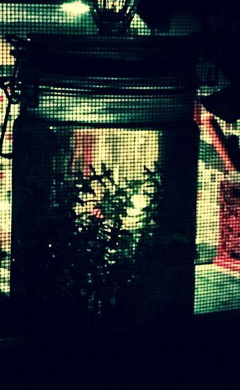 Reflection Indoors  Night Window Illuminated No People Architecture Close-up Pixelated Jararium Indoors  Plant