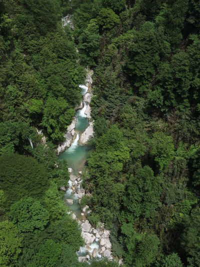 High Angle View Of River Flowing In Forest