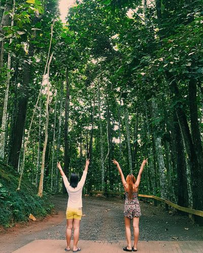 LhaizDiaries Arms Raised Two People Fun Outdoors Friendship Tree Nature Beauty In Nature Great Outdoors Plant EyeEmNewHere NewEyeEmPhotographer Green Color Carefree Travel Destinations History Happiness Women