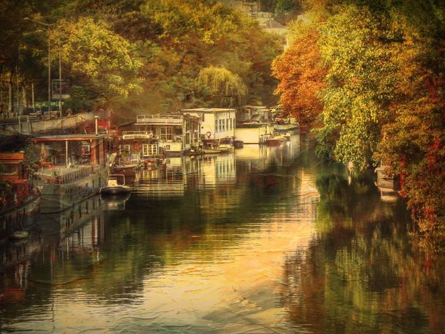... then I saw this river gently running through this burst of colors. It wasn't a particular season, nor a part of this beautiful day, no, it was life, in its entirety Stenkas Colored World Stenkas Monster Edits River River View Tree Trees Boat Boats