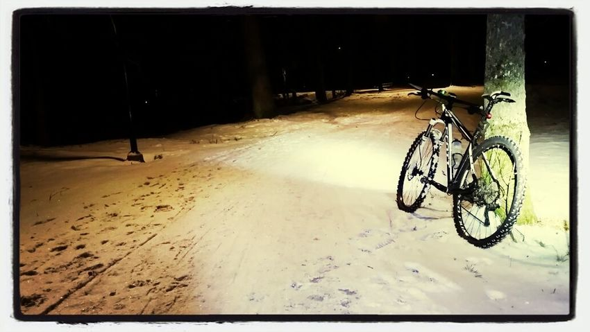 Winter Mtb MTB Montainbike Scott