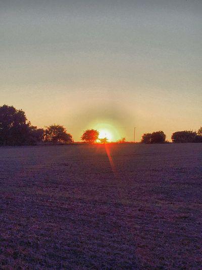 Sunset Sunset_collection Summer Landscape EyeEm Best Shots Eye4photography  EyeEm Gallery Beautiful Nature