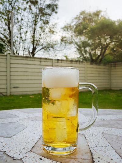 mug of beer on