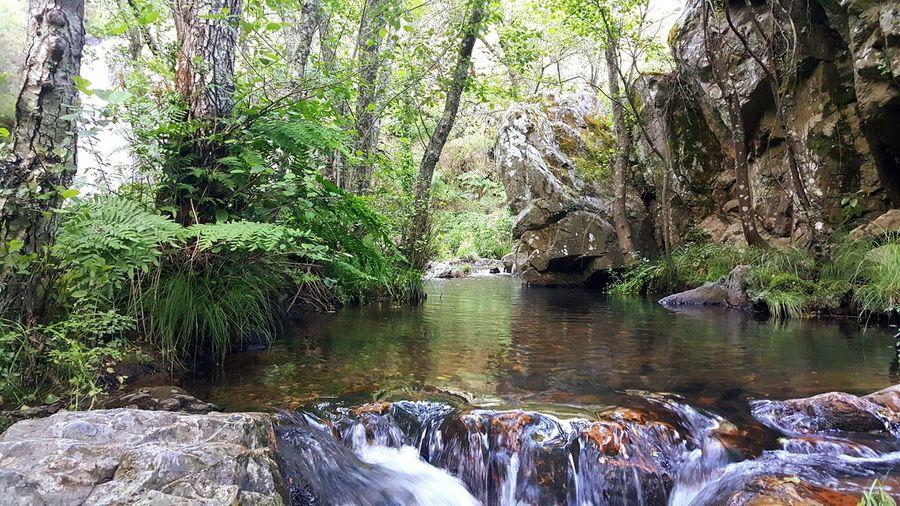 Lago River Penhasco Water Natureza 🐦🌳 Natureza🍁 Paisagem Rio CascataS River View EyeEmNewHere