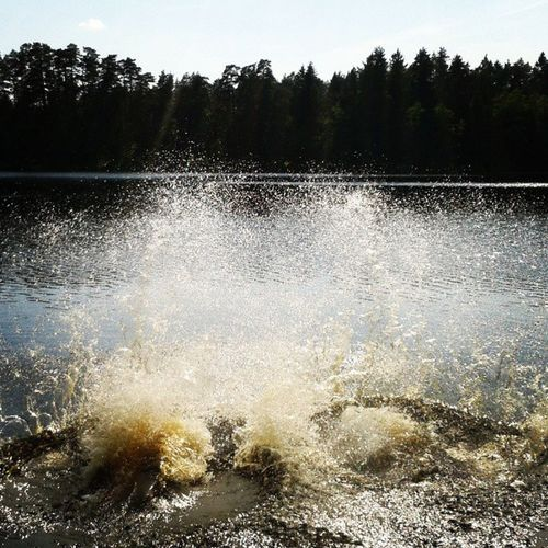 Kažezers Lake Water Wood Tree Sun Summer Swimming Latvia Instaphoto