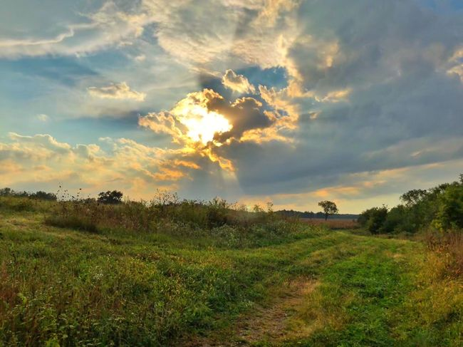 Sunscape Cloud - Sky Plant Sky Beauty In Nature Field Tranquility Tranquil Scene Landscape Scenics - Nature Environment Nature No People Rural Scene Agriculture Green Color Land Grass Sunset