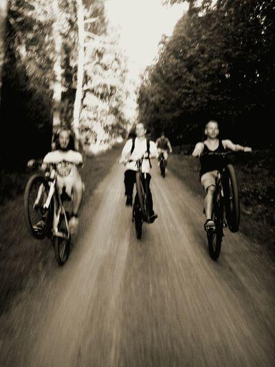 Catch Me Wheelie Best Friends JustCool Forest Summertime