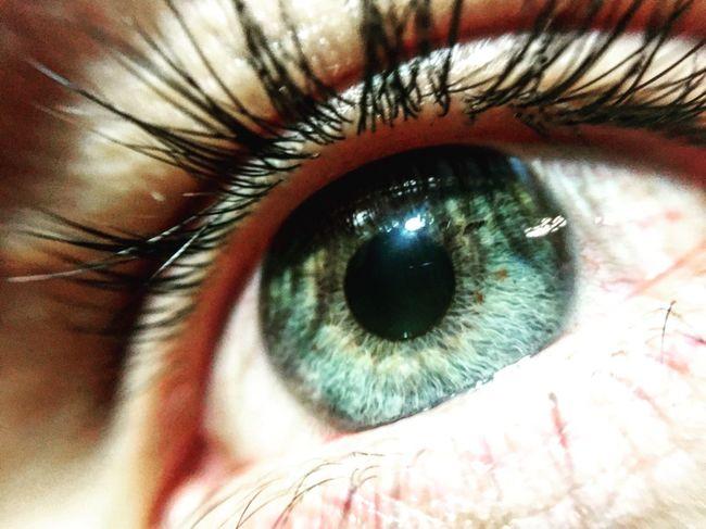 Eyeblue Eye Eyephotography