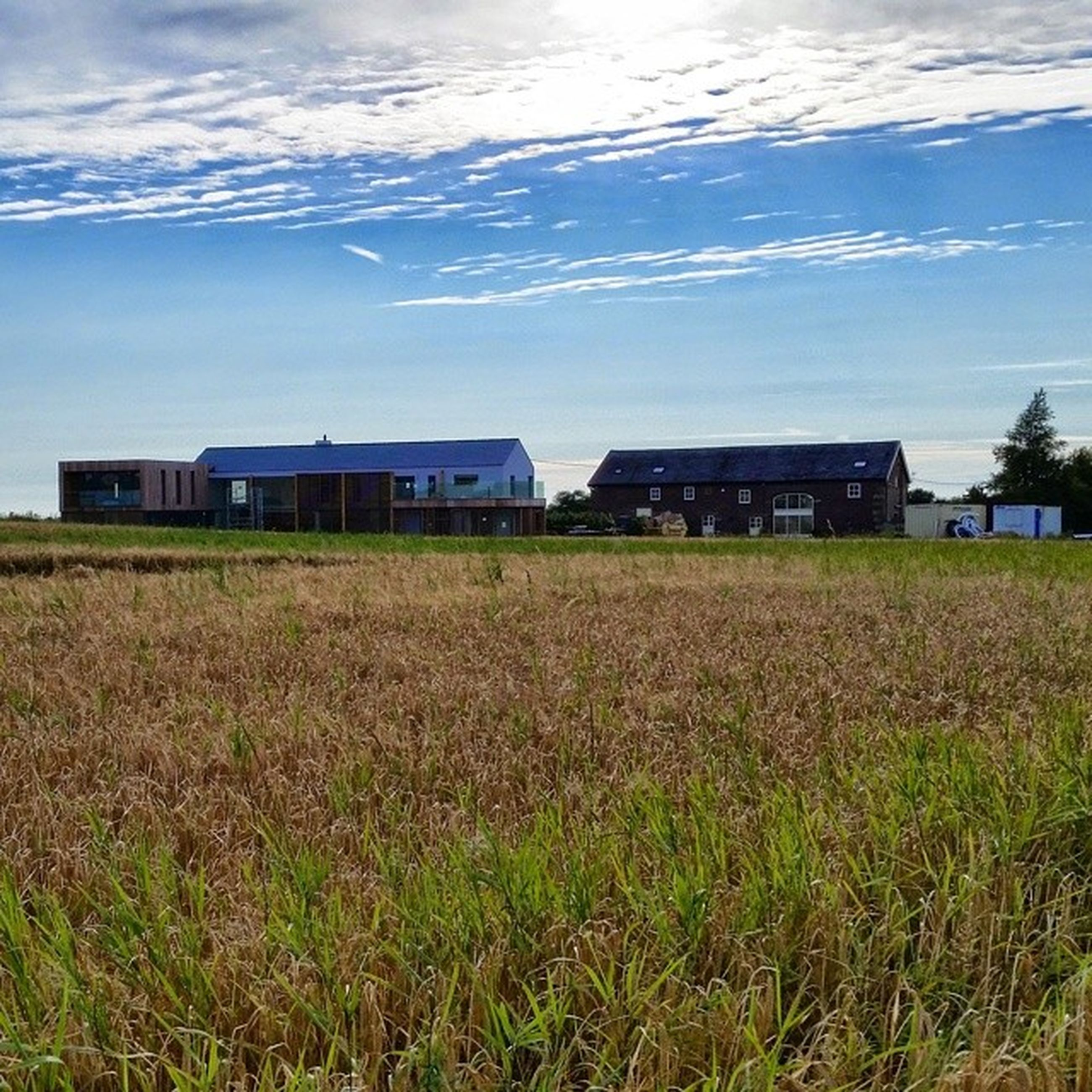 building exterior, architecture, built structure, grass, sky, field, house, residential structure, rural scene, cloud - sky, landscape, grassy, cloud, residential building, nature, day, farm, growth, agriculture, outdoors